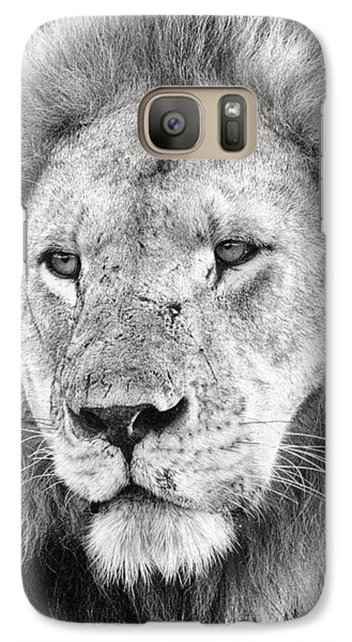3scape Photos Galaxy S7 Case featuring the photograph Lion King by Adam Romanowicz