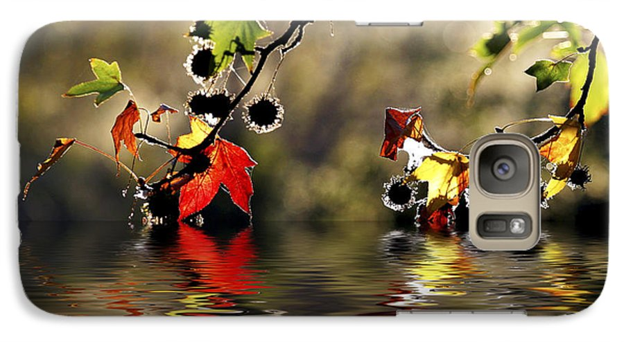 Liquidambar Maple Autumn Fall Flood Water Reflection Galaxy S7 Case featuring the photograph Liquidambar In Flood by Sheila Smart Fine Art Photography