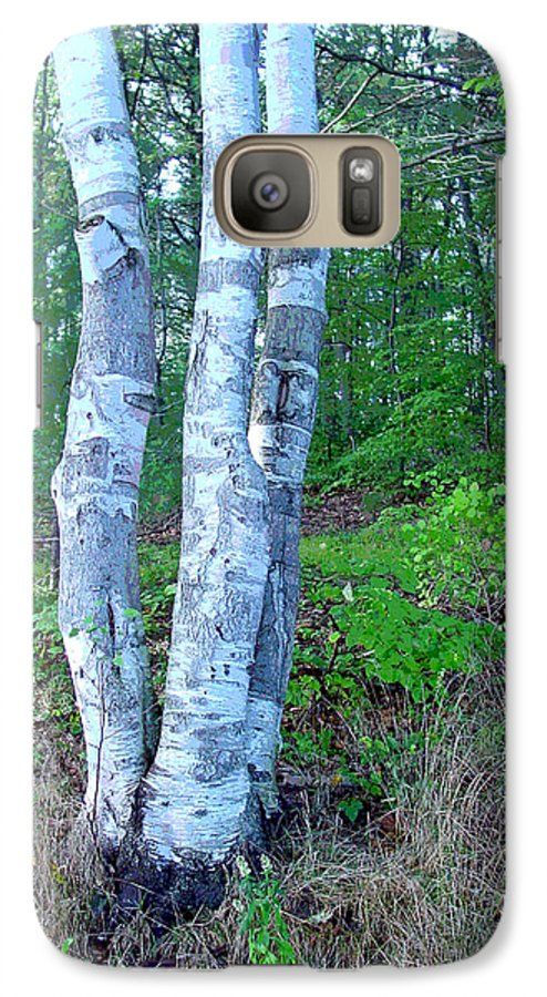 Birch Tree Galaxy S7 Case featuring the photograph Lone Birch In The Maine Woods by Suzanne Gaff