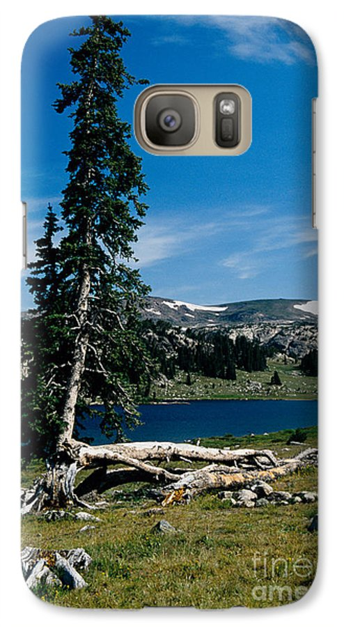 Mountains Galaxy S7 Case featuring the photograph Lone Tree At Pass by Kathy McClure