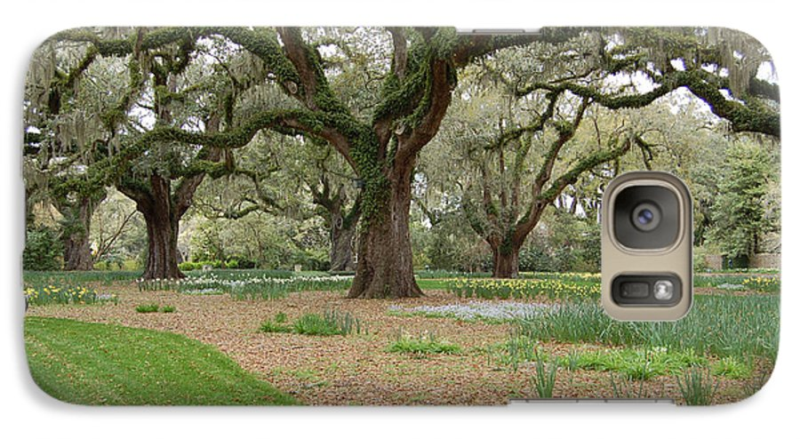 Live Oak Galaxy S7 Case featuring the photograph Majestic Live Oaks In Spring by Suzanne Gaff