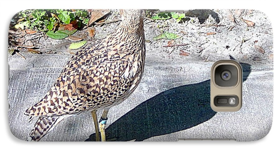 Birds Galaxy S7 Case featuring the photograph Me And My Shadow by Heather Morris