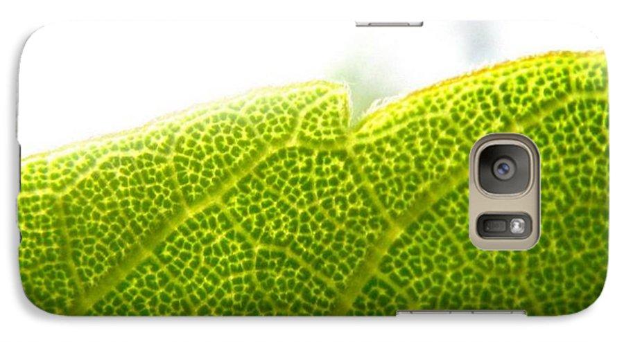 Leaf Galaxy S7 Case featuring the photograph Micro Leaf by Rhonda Barrett