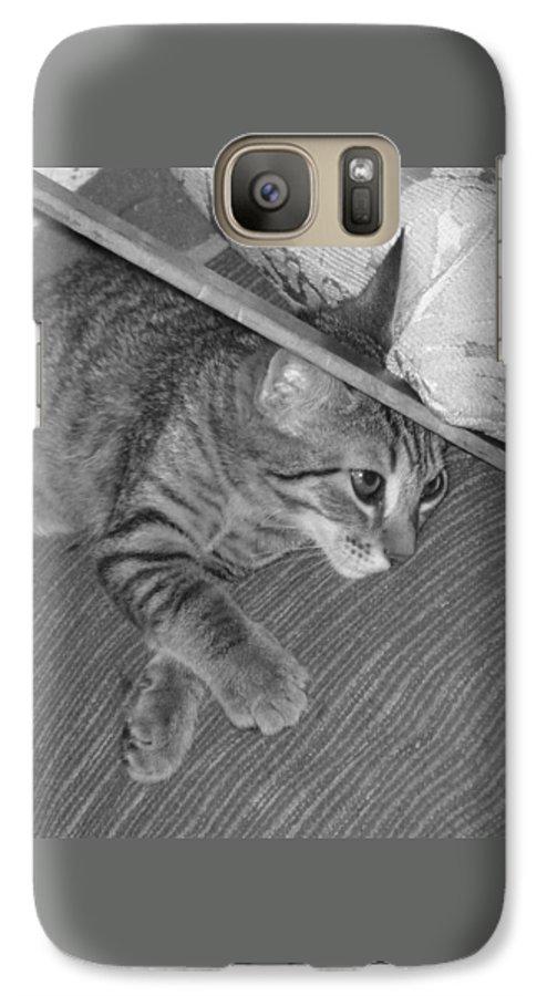 Kitten Galaxy S7 Case featuring the photograph Model Kitten by Pharris Art