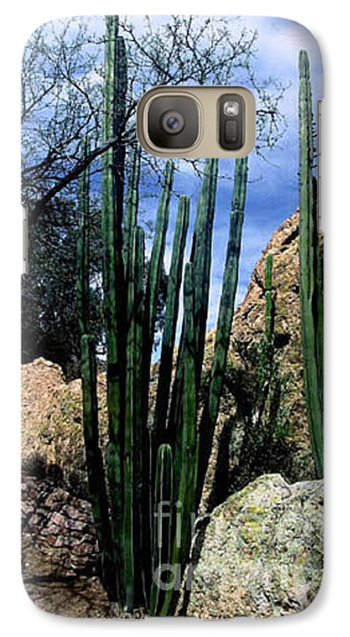 Cactus Galaxy S7 Case featuring the photograph Organ Pipe by Kathy McClure