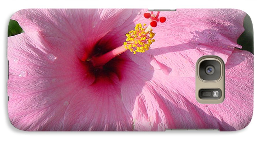Pink Hibiscus Galaxy S7 Case featuring the photograph Pink Hibiscus by Suzanne Gaff