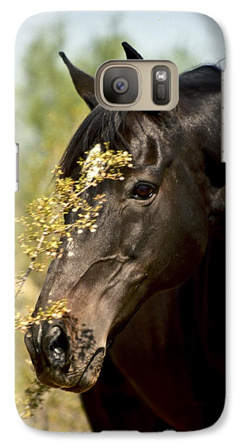 Horse Galaxy S7 Case featuring the photograph Portrait Of A Thoroughbred by Kathy McClure