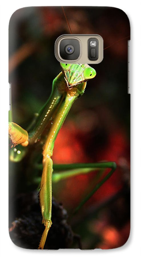 Praying Mantis Galaxy S7 Case featuring the photograph Praying Mantis Portrait by Linda Sannuti