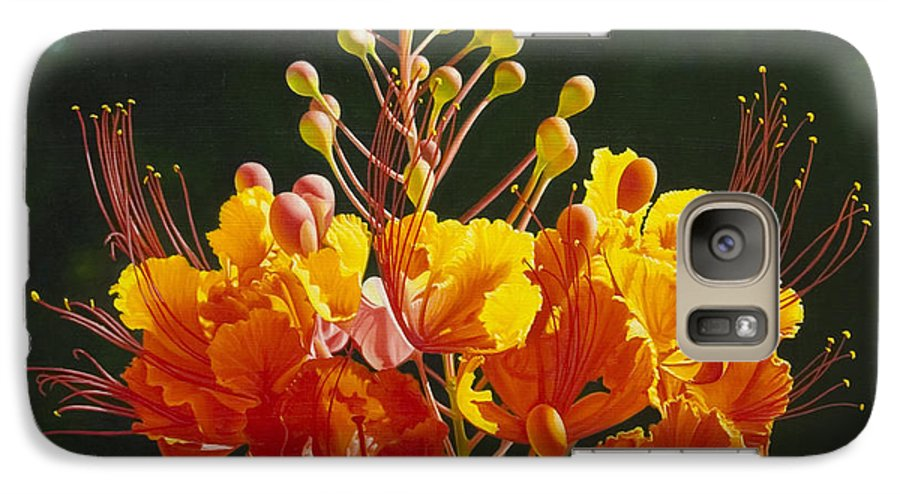 Floral Galaxy S7 Case featuring the painting Pride Of Barbados by Gary Hernandez