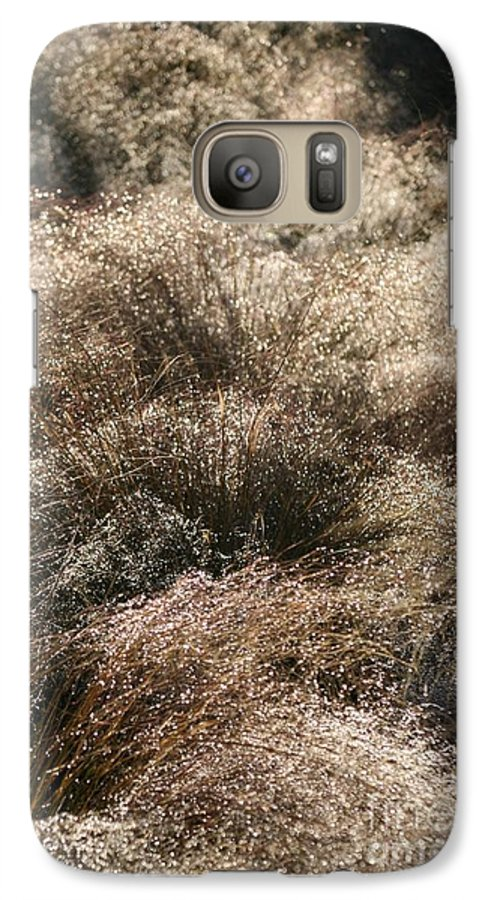 Grasses Galaxy S7 Case featuring the photograph Sparkling Grasses by Nadine Rippelmeyer