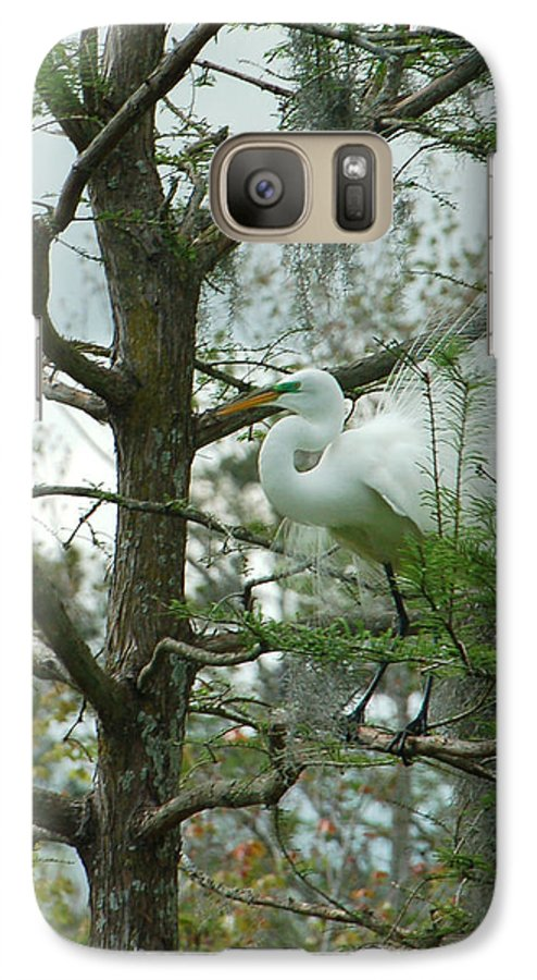 Egret Galaxy S7 Case featuring the photograph The Mating Dance by Suzanne Gaff