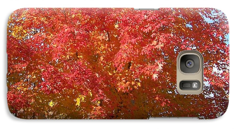 Tree Galaxy S7 Case featuring the photograph The Tree By The Church - Photograph by Jackie Mueller-Jones