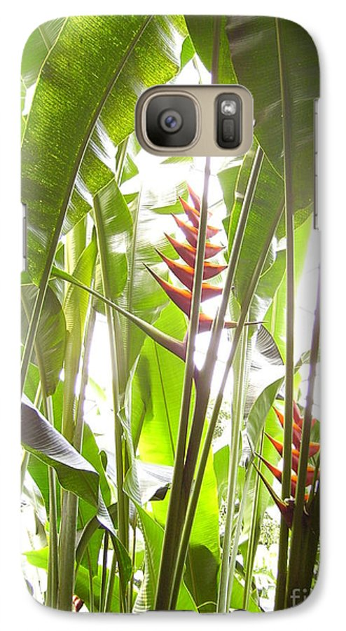 Plants Galaxy S7 Case featuring the photograph Tropical2 by Heather Morris