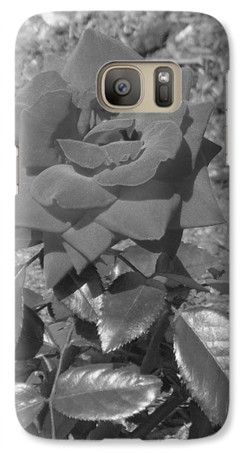 Rose Galaxy S7 Case featuring the photograph Velvet Rose by Pharris Art