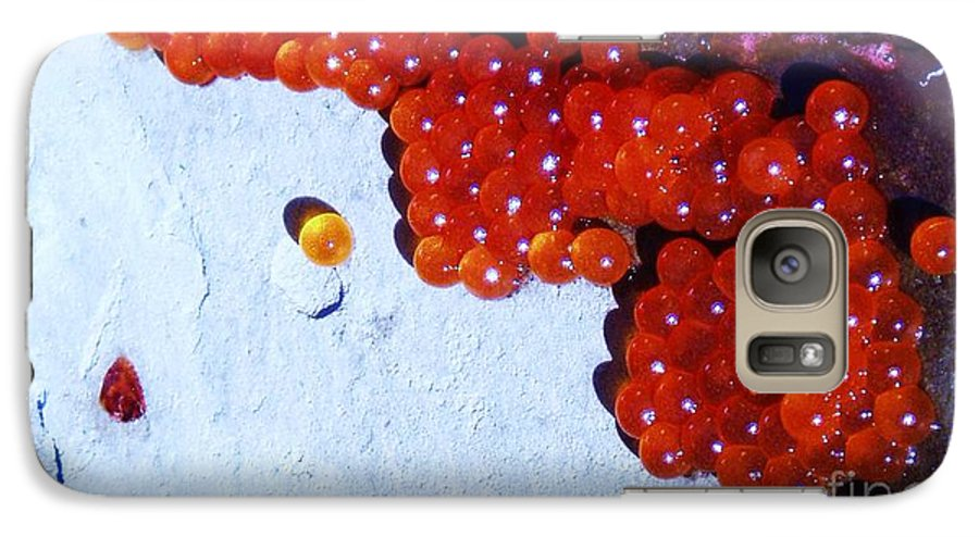 Photograph Fish Egg Lake Water Rock Galaxy S7 Case featuring the photograph Don't Kill Me. by Seon-Jeong Kim