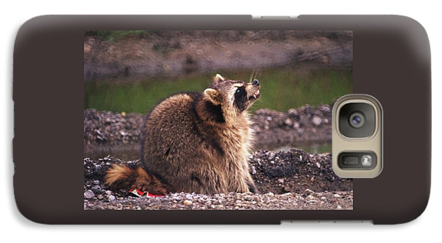 Raccoon Galaxy S7 Case featuring the photograph 070406-67 by Mike Davis