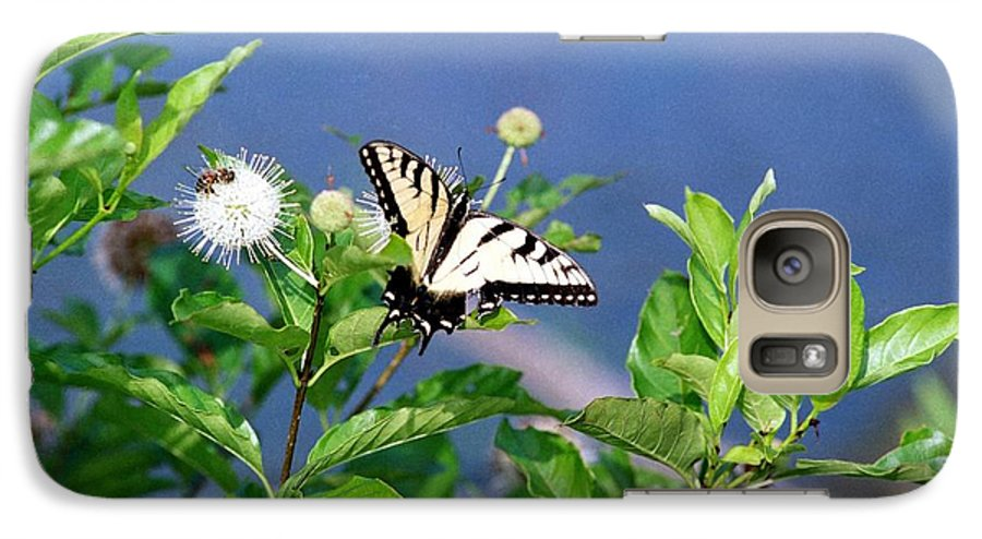 Butterfly Galaxy S7 Case featuring the photograph 080706-7 by Mike Davis