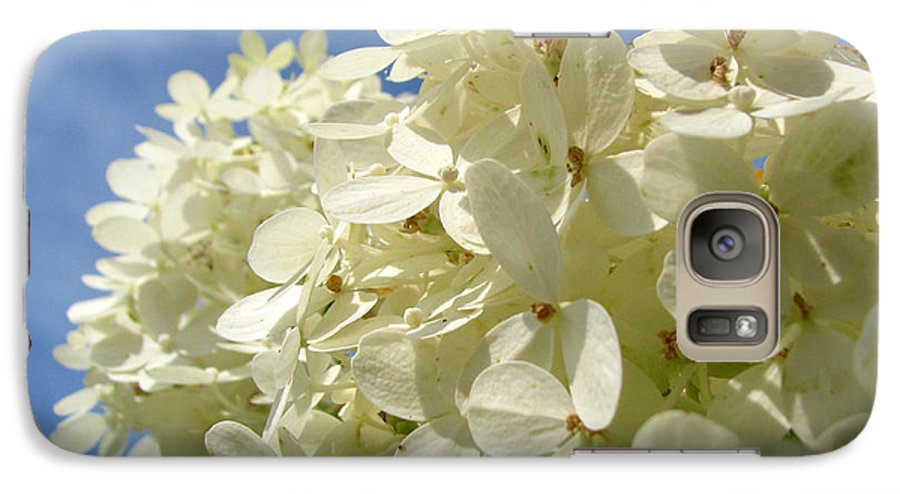 Hydranga Galaxy S7 Case featuring the photograph Hydrangea by Amanda Barcon