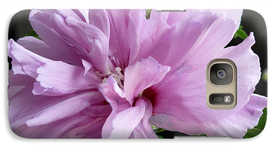 Phoyography.hibiscus Flower Floral Bloom Bush Pink Galaxy S7 Case featuring the photograph So Pink by Karin Dawn Kelshall- Best