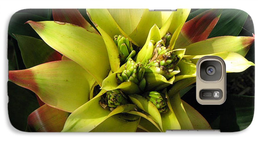 Tropical Galaxy S7 Case featuring the photograph Tropical by Amanda Barcon