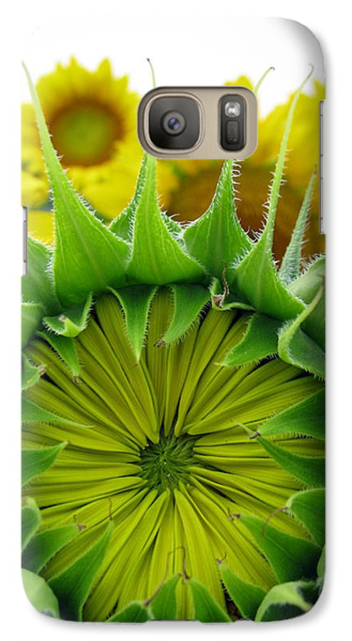 Sunflwoers Galaxy S7 Case featuring the photograph Sunflower Series by Amanda Barcon