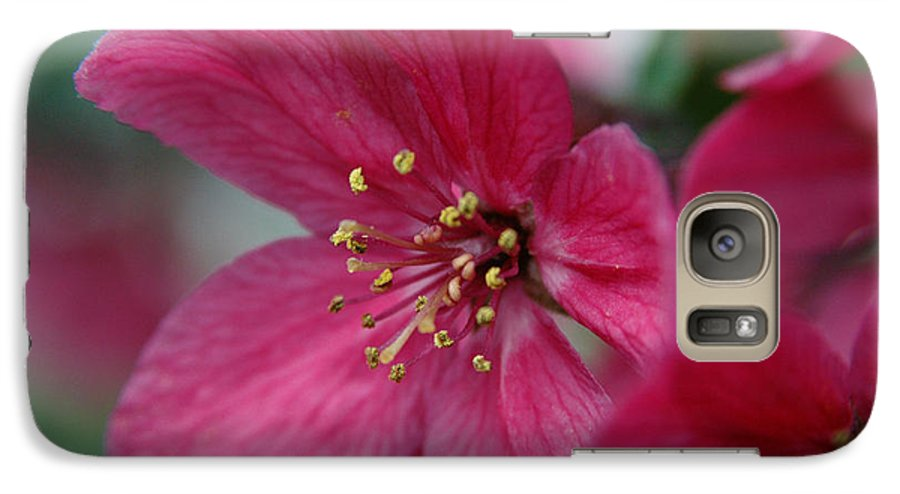 Flora Galaxy S7 Case featuring the photograph Untitled by Kathy Schumann