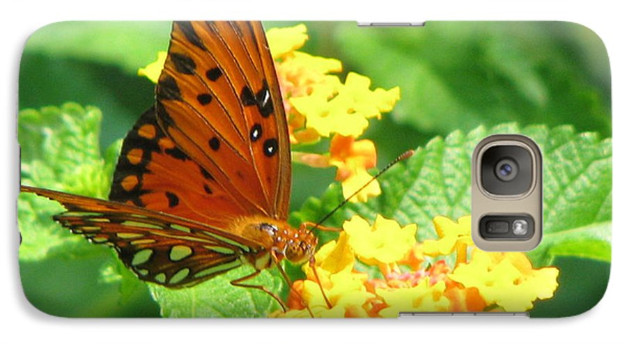 Butterfly Galaxy S7 Case featuring the photograph Butterfly by Amanda Barcon