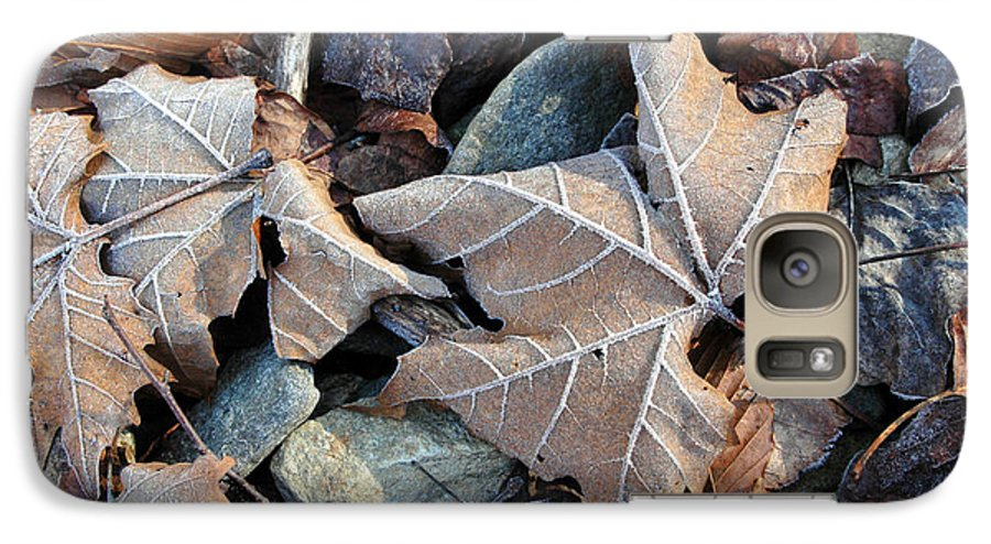 Leaf Galaxy S7 Case featuring the photograph Untitled by Kathy Schumann