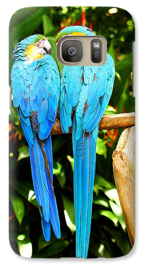 Bird Galaxy S7 Case featuring the photograph A Pair Of Parrots by Marilyn Hunt