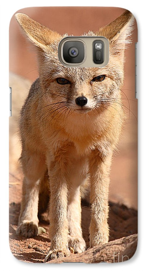 Fox Galaxy S7 Case featuring the photograph Adult Kit Fox Ears And All by Max Allen