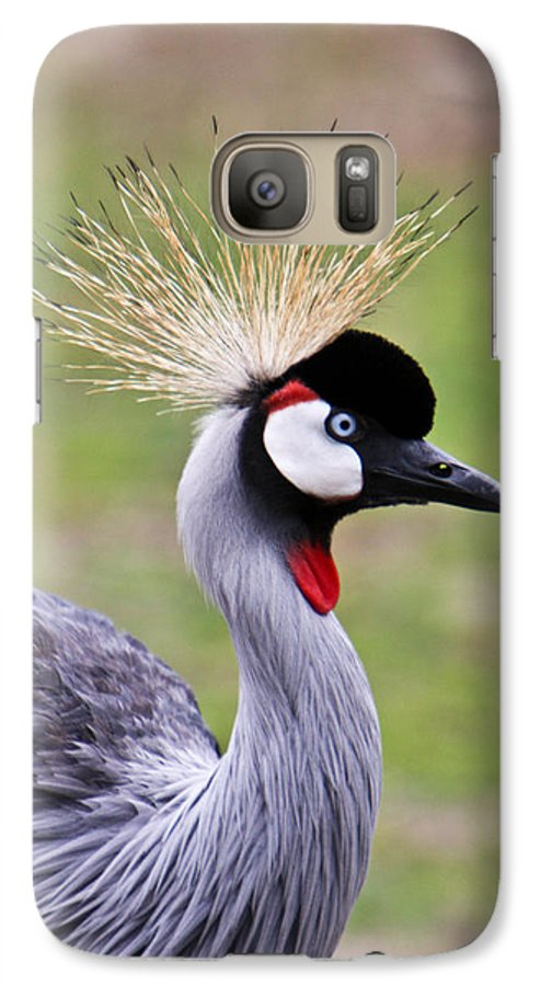 Bird Galaxy S7 Case featuring the photograph African Crowned Crane by Douglas Barnett