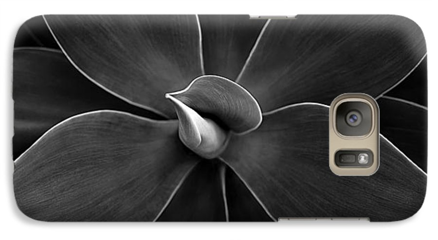 Agave Galaxy S7 Case featuring the photograph Agave Leaves Detail by Marilyn Hunt