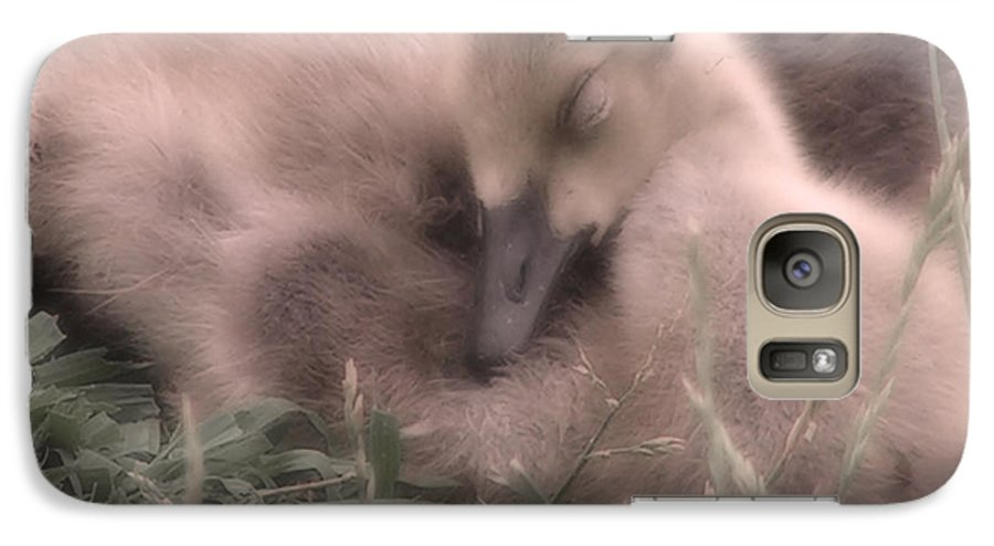 Goose Galaxy S7 Case featuring the photograph All Is Right In My World by Kenneth Krolikowski