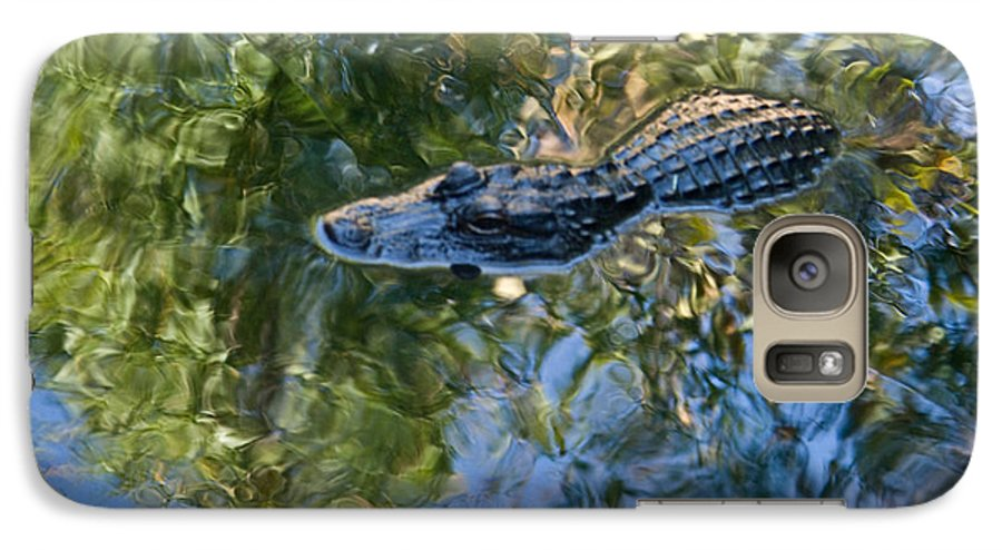 Alligator Galaxy S7 Case featuring the photograph Alligator Stalking by Douglas Barnett