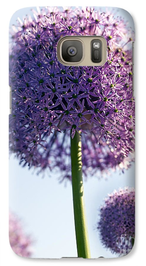 Allium Galaxy S7 Case featuring the photograph Allium Flower by Tony Cordoza