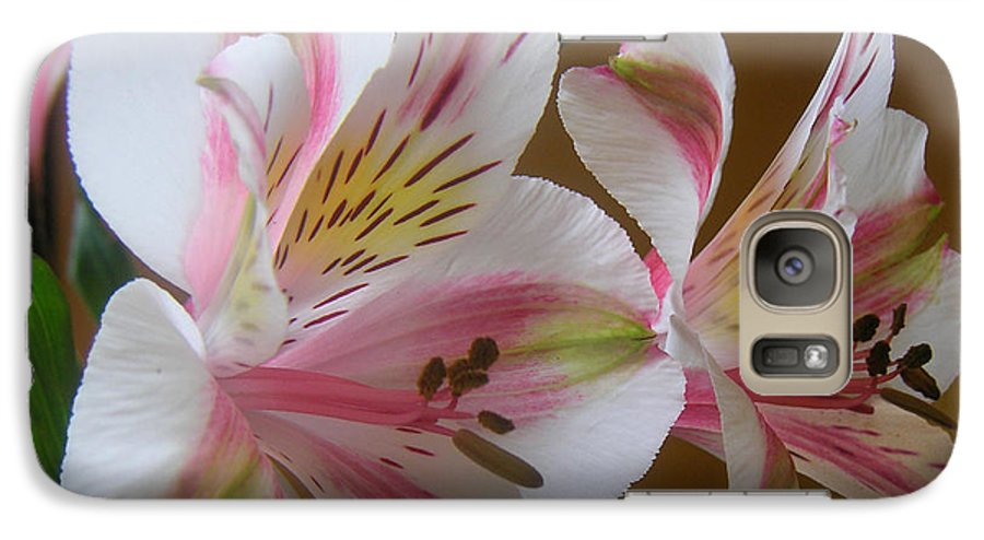 Nature Galaxy S7 Case featuring the photograph Alstroemerias - Listening by Lucyna A M Green