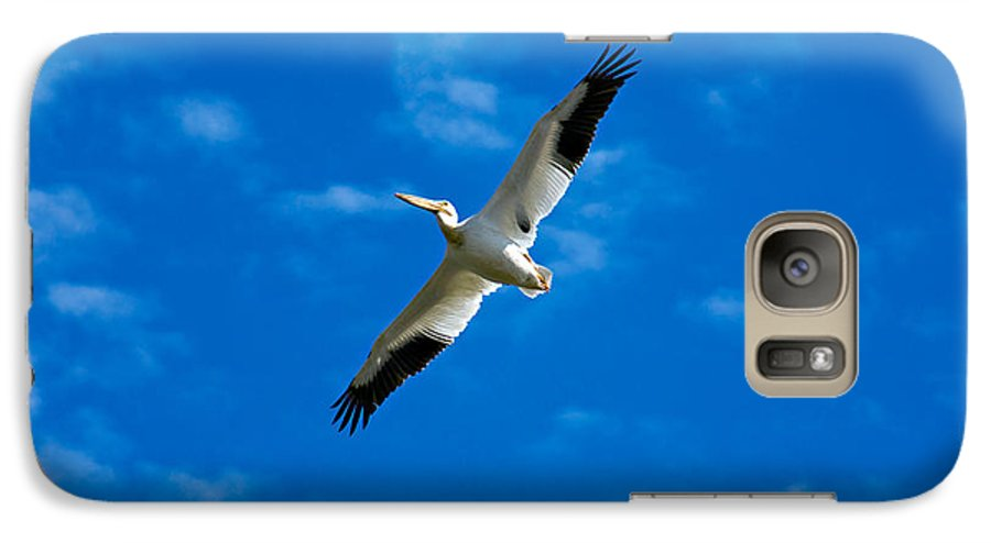 American Galaxy S7 Case featuring the photograph American White Pelican by Marilyn Hunt