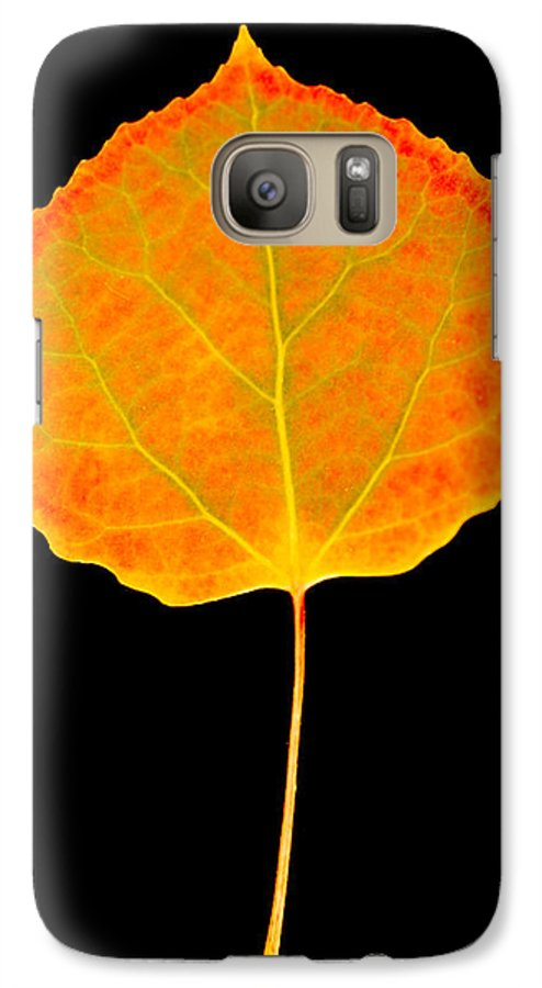 Leaf Galaxy S7 Case featuring the photograph Aspen Leaf by Marilyn Hunt