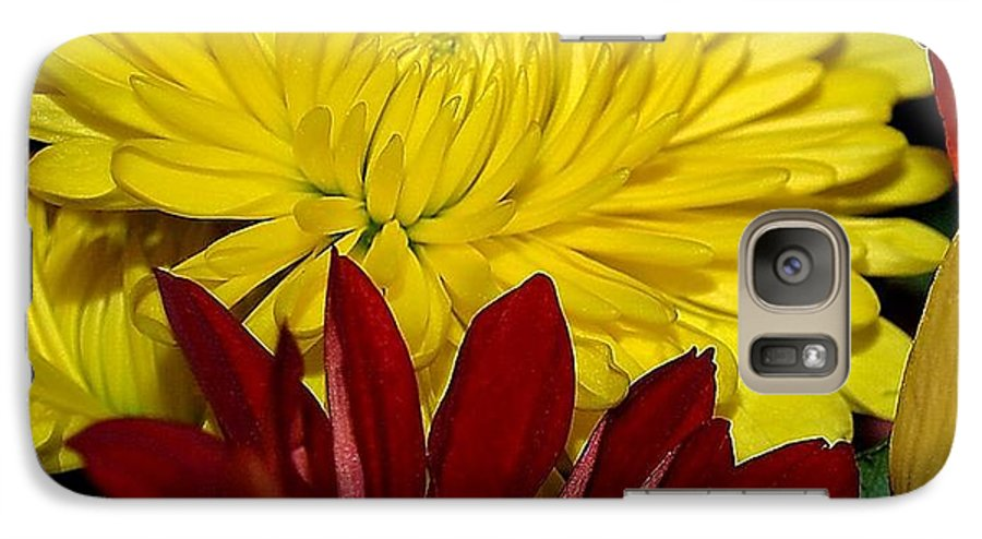Chrysanthemum Photography Galaxy S7 Case featuring the photograph Autumn Colors by Patricia Griffin Brett