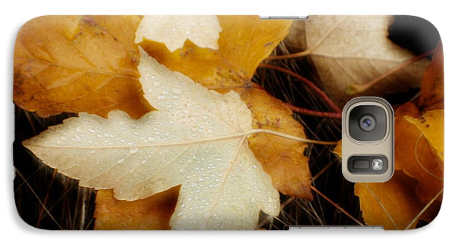 Leaf Galaxy S7 Case featuring the photograph Autumn Dew by Idaho Scenic Images Linda Lantzy