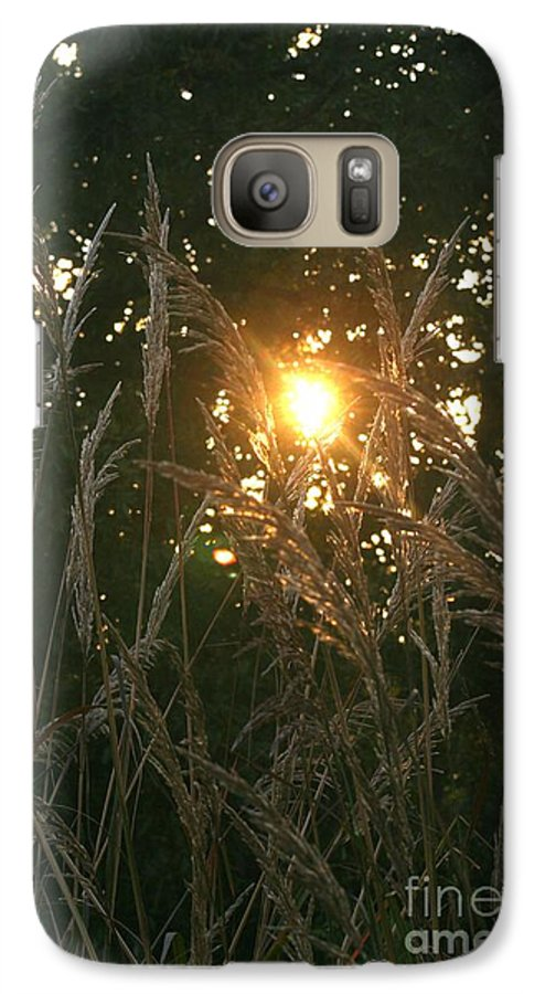 Light Galaxy S7 Case featuring the photograph Autumn Grasses In The Morning by Nadine Rippelmeyer