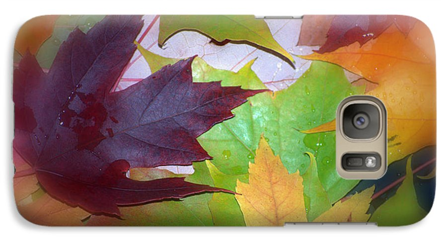 Trees Galaxy S7 Case featuring the photograph Autumn by Larry Keahey
