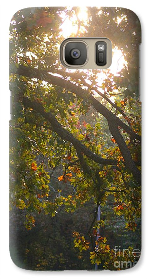 Autumn Galaxy S7 Case featuring the photograph Autumn Morning Glow by Nadine Rippelmeyer