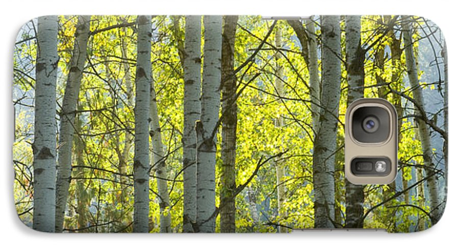 Trees Galaxy S7 Case featuring the photograph Autumn Through The Trees by Idaho Scenic Images Linda Lantzy