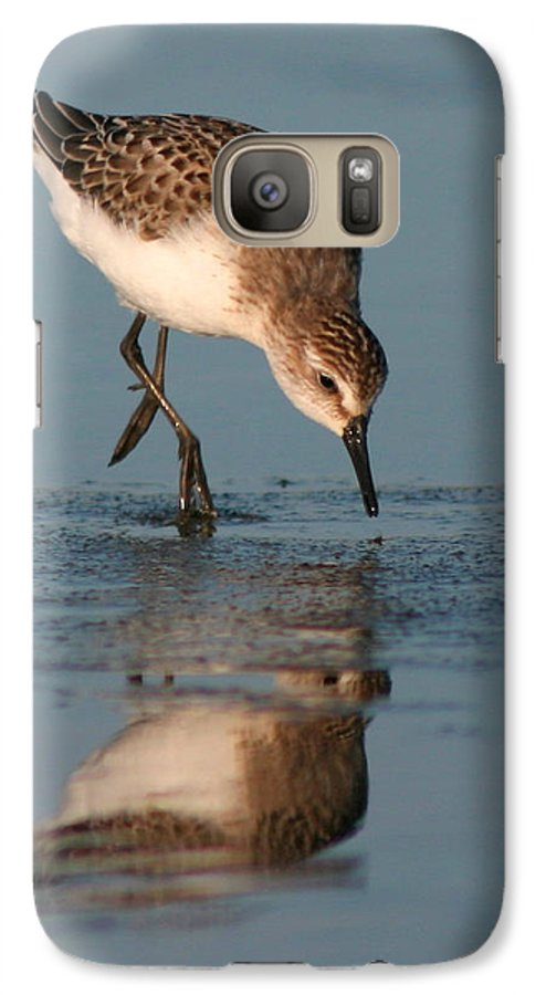 Sanderling Galaxy S7 Case featuring the photograph Ballet Feeding Of A Sanderling by Max Allen
