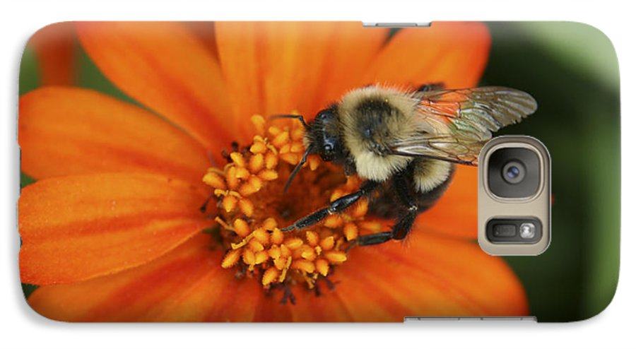 Bee Galaxy S7 Case featuring the photograph Bee On Aster by Margie Wildblood