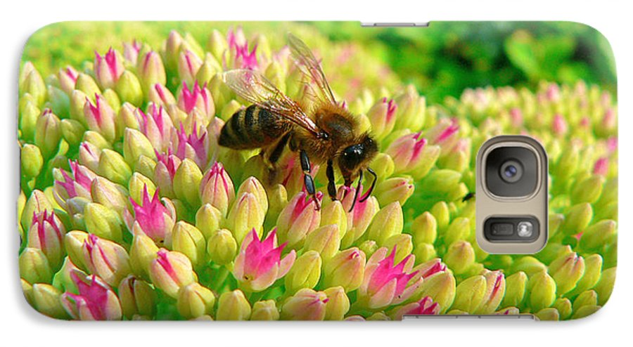 Flowers Galaxy S7 Case featuring the photograph Bee On Flower by Larry Keahey