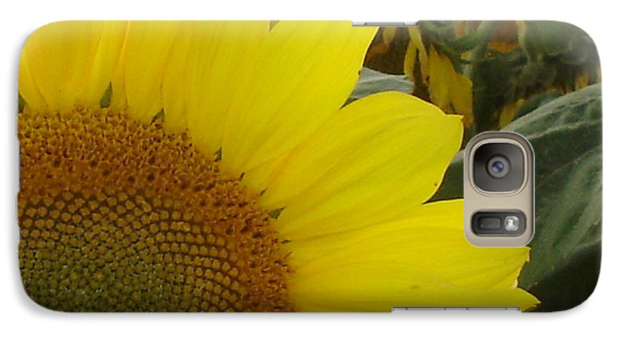 Bee's Galaxy S7 Case featuring the photograph Bee On Sunflower 1 by Chandelle Hazen