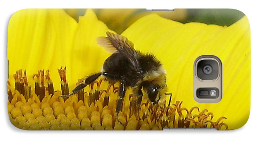 Bee's Galaxy S7 Case featuring the photograph Bee On Sunflower 2 by Chandelle Hazen