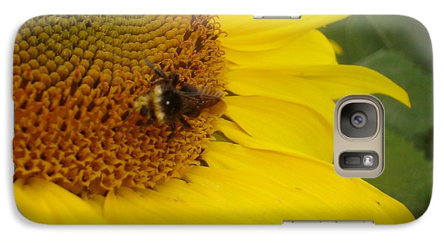 Bee Galaxy S7 Case featuring the photograph Bee On Sunflower 3 by Chandelle Hazen